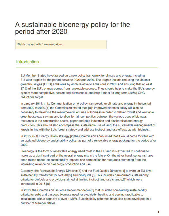 UNICA's contribution to the EU public consultation on the sustainability of bioenergy