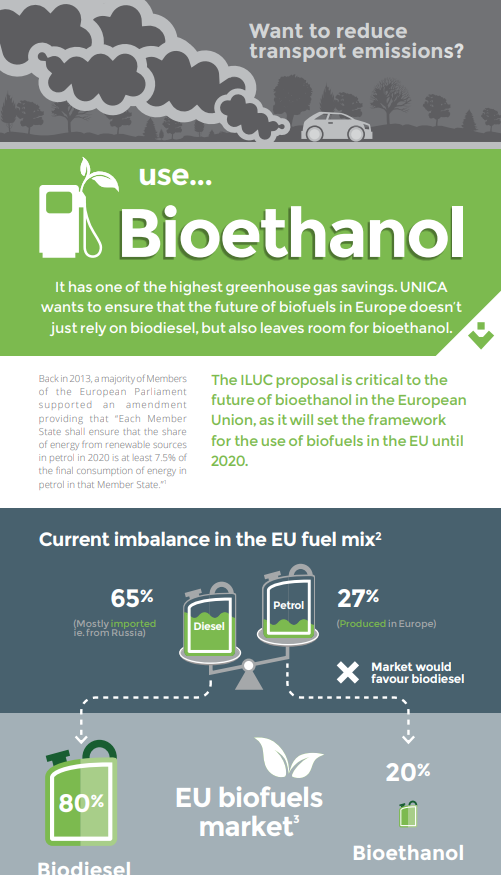 Support an EU Sub-target for Renewables in Petrol