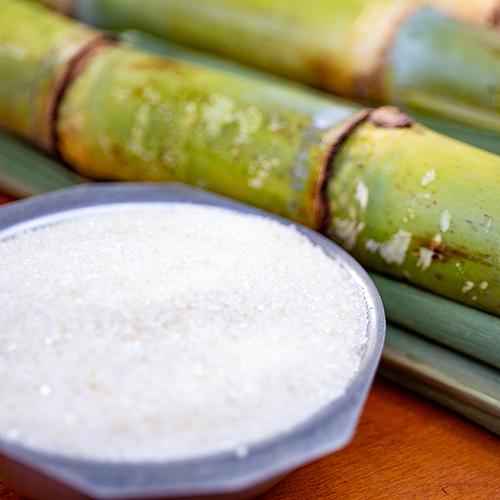Sugarcane Sugar